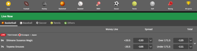 Bet99 Sports Selection